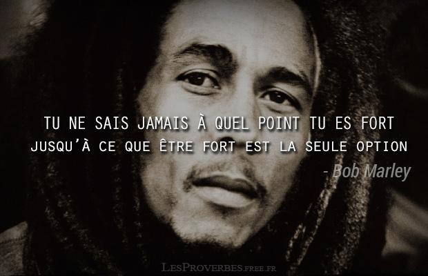 Tu Ne Sais Pas à Quel Point Bob Marley Citation En Image